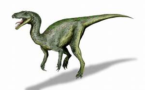 File:Gojirasaurus BW.jpg - Wikipedia