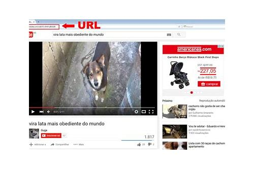 como baixar videos do youtube no navegador