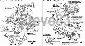 351 Engine Diagram Questions  U0026 Answers  With Pictures