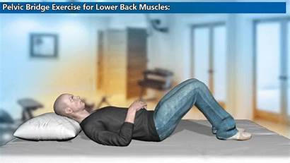 Pelvic Bridge Exercise Lower Pain Muscles Fibromyalgia