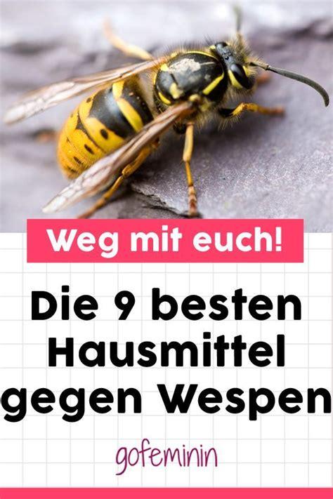 hausmittel gegen wespen 9 geniale hausmittel gegen wespen damit vertreibt ihr die fiesen viecher garantiert klingel