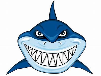 Shark Clipart Head Clip Cartoon Transparent Mouth