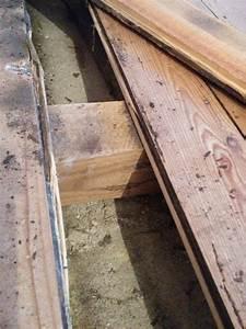 Laminat Verlegen Welche Richtung : dielenboden auf betonfundament d mmung ~ Lizthompson.info Haus und Dekorationen