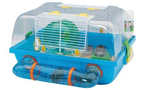 criceti gabbie gabbie per criceti quale la migliore animali pucciosi
