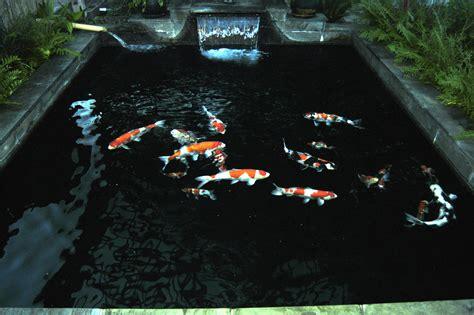 koi pond lighting ideas 35 sublime koi pond designs and water garden ideas for modern homes