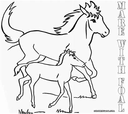 Coloring Horse Pages Printable