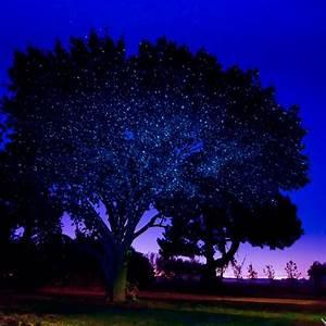 outdoor laser lights for sale decor ideasdecor ideas With outdoor laser lights for sale ireland