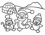 Penguin Coloring Printable Everfreecoloring sketch template