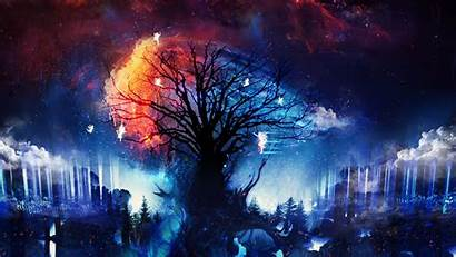Fantasy Fairies Stars Trees Artwork Fox Desktop