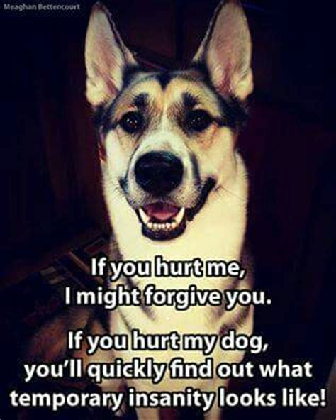 Hurt My Dog, And I Will Make You Wish You Were Never Born. Good Quotes In French. Faith Morning Quotes. Christmas Quotes Spurgeon. Boyfriend Quotes On We Heart It. Instagram Quotes I Miss You. Family Quotes Wall Stickers. Deep Romantic Quotes. Music Quotes By Famous Musicians