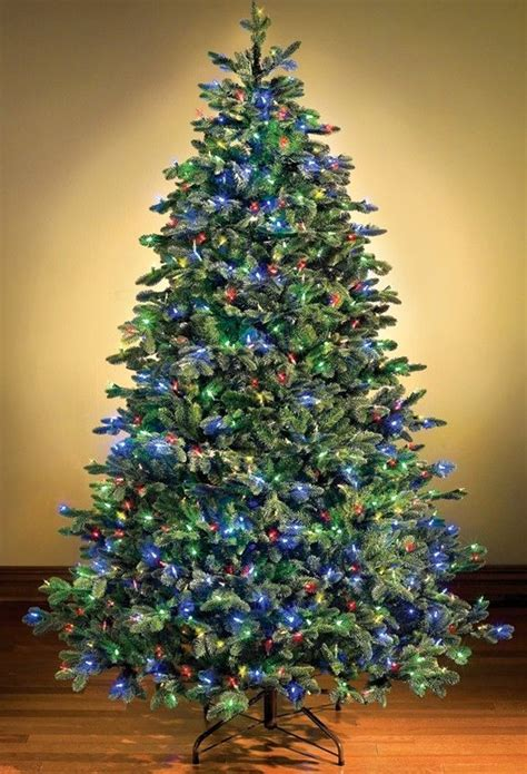 white lighted christmas trees 14 best images about fir artificial christmas trees on 5528