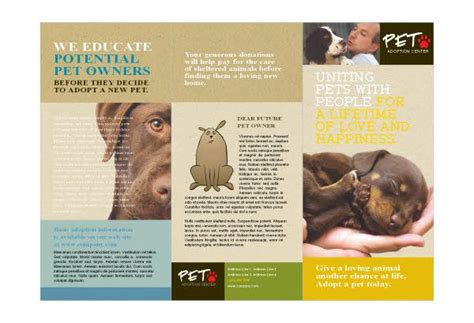 brochure animal shelter google search werk animal
