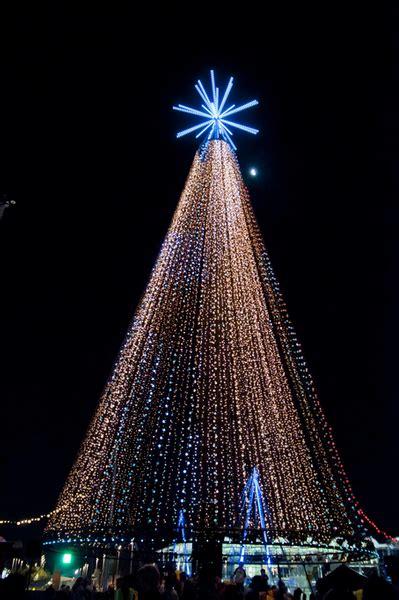 the telecom christmas tree auckland infonews co nz new