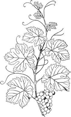 Printable Tree Pattern With Branches | north american