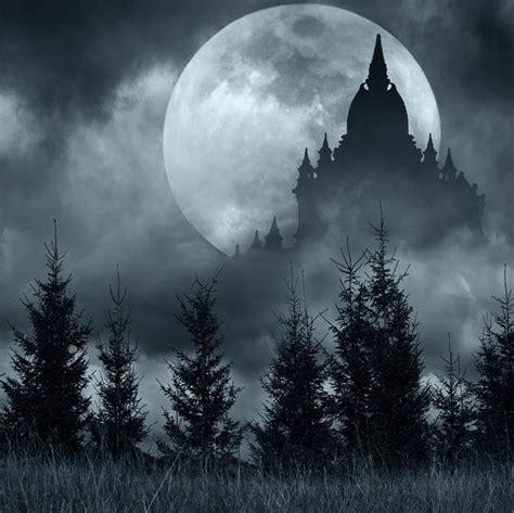 halloween backdrop night woods black castle