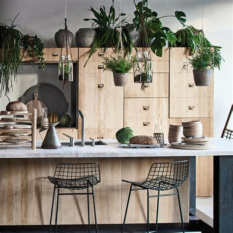 plante pour cuisine comment créer un jardin intérieur