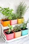 Best 25+ Herb garden indoor ideas on Pinterest indoor herb garden