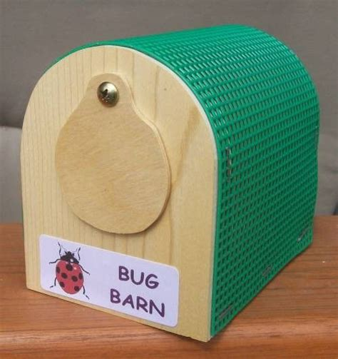 Barn Bug by Insect Keeper Bug Barn Ss Woodcraft