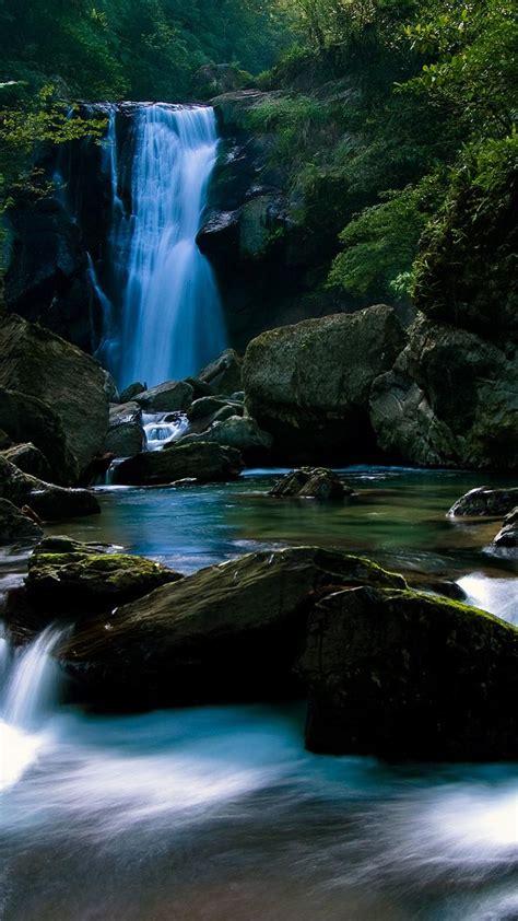 fondos de naturaleza ambientes naturales