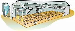 DIY Plans Poultry House Design Pdf PDF Download Printable