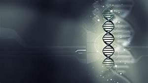 Dna Structure Hd Wallpaper