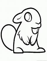 Beaver Coloring Animal Pages sketch template