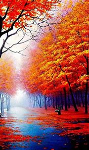 11+ Beautiful Nature Wallpaper Zedge - Basty Wallpaper