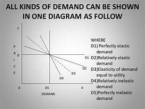Degree Of Elasticity Of Demand Pdf  Types Of Elasticity Of Demand  2019