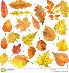 Set Of Autumn Leaves In Watercolor Stock Vector - Image ...