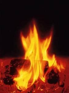 Offenes Feuer Auf Eigenem Grundstück : damit ein kaminfeuer richtig brennt und unweltvertr glich ist ~ Lizthompson.info Haus und Dekorationen