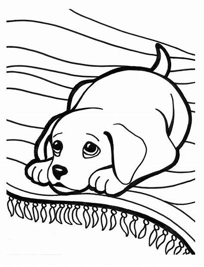 Puppy Coloring Pages Printable Super