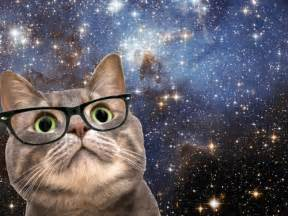 Space Cat with Glasses