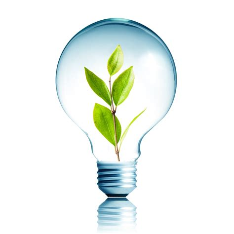 led light bulb sustainability westport construction inc