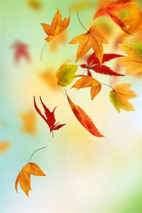 Autumn Wallpapers Watercolor by Watercolour Autumn Leaves Iphone Wallpaper Buscar Con