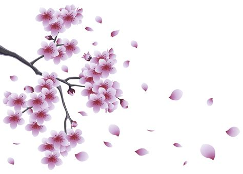 spring branch tree flowers png clipart gallery yopriceville
