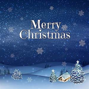 Beautiful, Dark, Blue, Merry, Christmas, Vector, Illustration, Christmas, Winter, Snow, Png, And, Vector