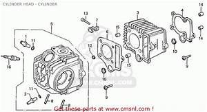 49cc Pocket Bike Engine Parts
