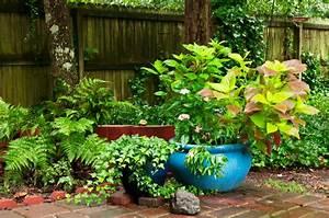 Farn Im Garten : farn im garten richtig pflanzen und pflegen ~ Orissabook.com Haus und Dekorationen