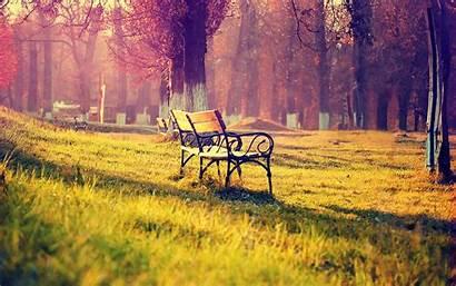 Bunga Siang Malam Gambar Wow Meadow Bench