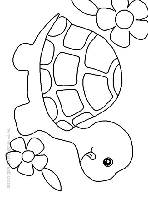 easy cute animal pictures  draw impremedianet