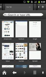 Download & Inst... Silk Browser Update