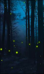 Fireflies Live Wallpaper Free Android Live Wallpaper ...