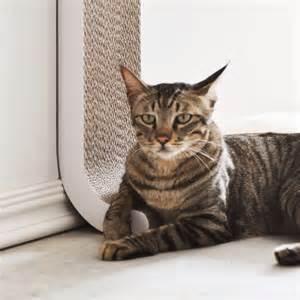 cat scratching 4claws wall mount cat scratching post 187 gadget flow