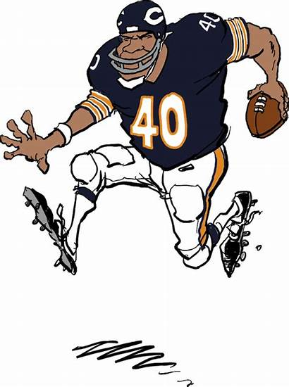 Bears Chicago Clipart Football Gale Sayers Graphics