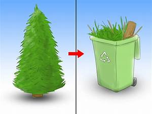 How to Care for a Christmas Tree: 12 Steps (with Pictures)