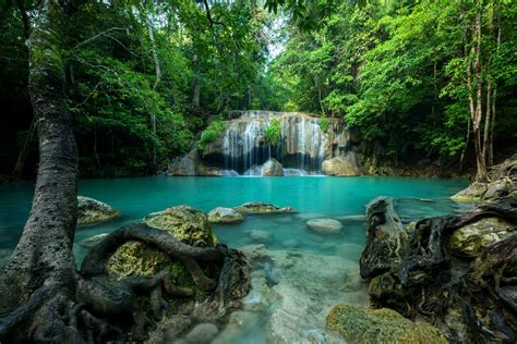 Best National Parks In Thailand Khao Sok National Park