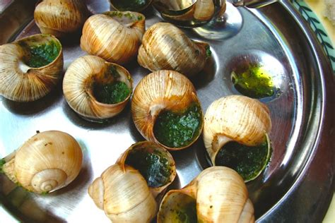 escargot cuisine 7 expensive delicacies that used to be cheap