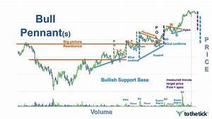 Bull Pennant — ToTheTick™