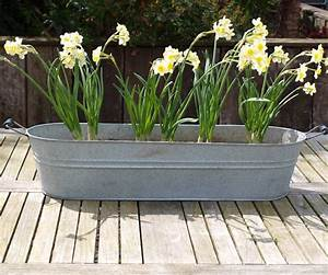 Oval Zinc Planter By Idyll Home