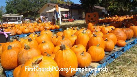Boulder Pumpkin Patch 2015 by 100 Coconut Grove Pumpkin Patch Festival Celebrate